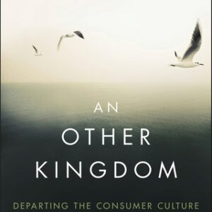 An Other Kingdom: Departing the Consumer Culture 1st Edition – PDF ebook