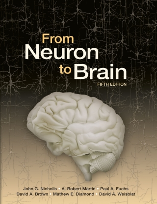 (PDF ebook) From Neuron to Brain, 5th Edition