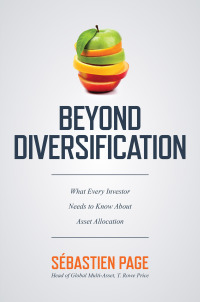 Beyond Diversification: What Every Investor Needs to Know About Asset Allocation 1st Edition – PDF ebook
